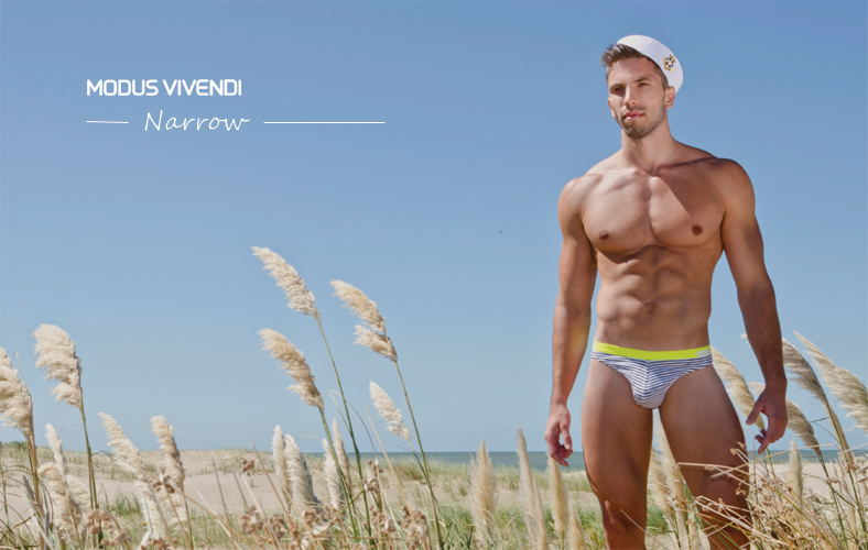 Modus Vivendi - Narrow