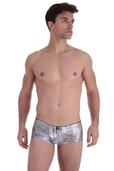 L'homme invisible - Trunk Silver Python