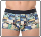 Trunk in a satiny and stretchable material with beautiful pictures of seasides...